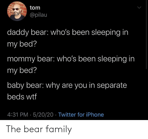Bear: The bear family