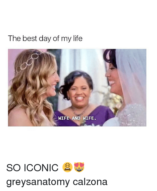 Life, Memes, and Best: The best day of my life  WIFE AND WIFE SO ICONIC 😩😻 greysanatomy calzona