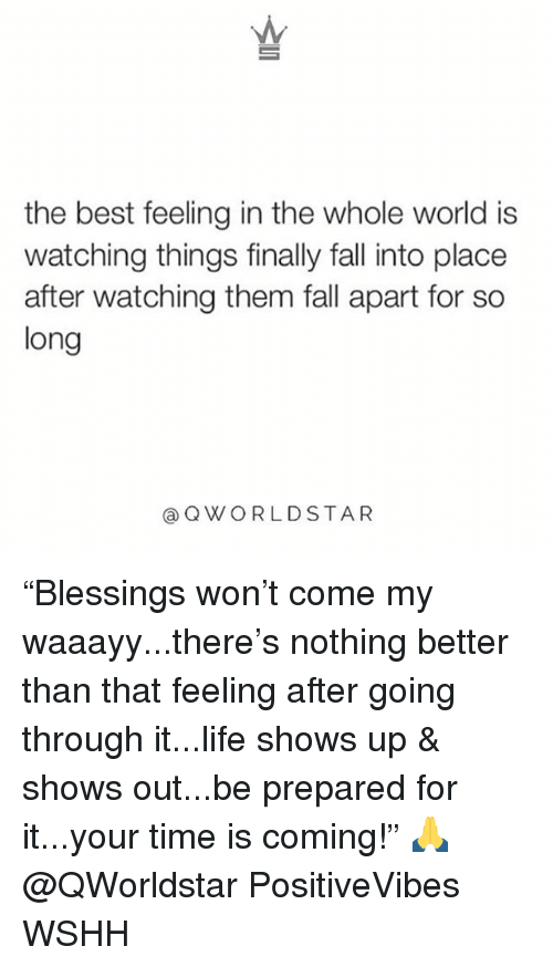 """Fall, Life, and Memes: the best feeling in the whole world is  watching things finally fall into place  after watching them fall apart for so  long  @QWORLDSTAR """"Blessings won't come my waaayy...there's nothing better than that feeling after going through it...life shows up & shows out...be prepared for it...your time is coming!"""" 🙏 @QWorldstar PositiveVibes WSHH"""