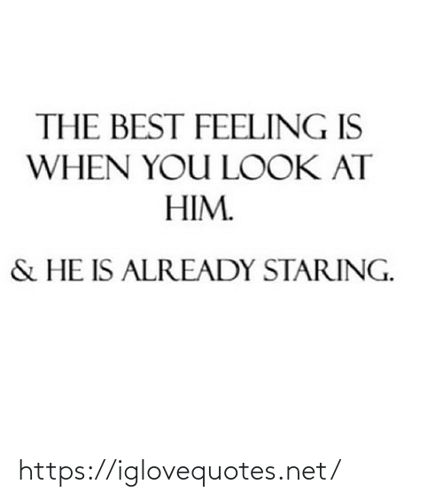 feeling: THE BEST FEELING IS  WHEN YOU LOOK AT  HIM.  & HE IS ALREADY STARING. https://iglovequotes.net/