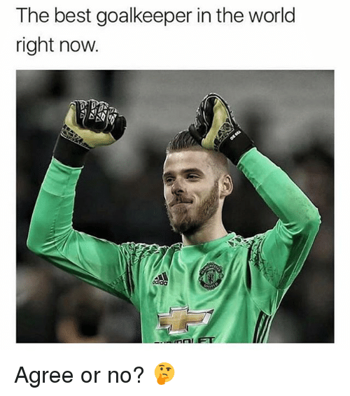 Memes, Best, and World: The best goalkeeper in the world  right now.  dida Agree or no? 🤔