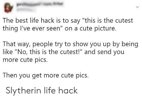 "Cutest Thing: The best life hack is to say ""this is the cutest  thing I've ever seen"" on a cute picture.  That way, people try to show you up by being  like ""No, this is the cutest!"" and send you  more cute pics.  Then you get more cute pics. Slytherin life hack"