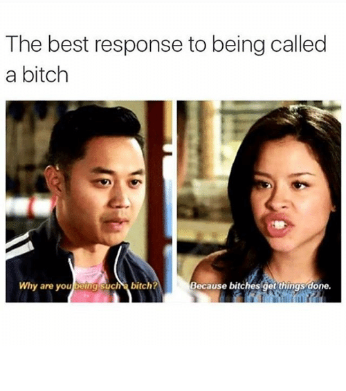 Funny, Memes, and Responsibility: The best response to being called  a bitch  Why are you being such bitch  Because bitches get things done ⠀