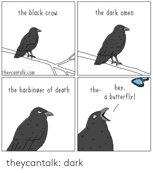 Tumblr, Black, and Blog: the black crow  the dark omen  theycantalk.com  hey  butterfly!  the harbinger of death  the- theycantalk: dark