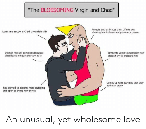 """Love, Pressure, and Virgin: """"The BLOSSOMING Virgin and Chad""""  Accepts and embraces their differences,  allowing him to learn and grow as a person  Loves and supports Chad unconditionally  Doesn't feel self conscious because  Chad loves him just the way he is  Respects Virgin's boundaries and  doesn't try to pressure him  Comes up with activities that they  both can enjoy  Has learned to become more outoging  and open to trying new things An unusual, yet wholesome love"""