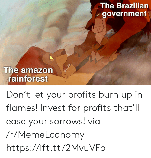 Profits: The Brazilian  government  The amazon  rainforest Don't let your profits burn up in flames! Invest for profits that'll ease your sorrows! via /r/MemeEconomy https://ift.tt/2MvuVFb
