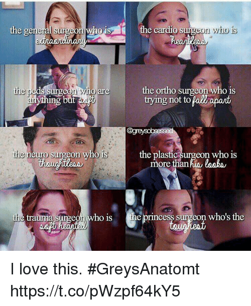 Love, Memes, and Princess: the cardio surgeon who is  the general surgeon who1  the ortho surgeon who is  trying not to pall apant  are  ing  the neuro surgeon who is  the plastic surgeon who is  more thanhis losbs  the trauma surgeon who is the princess surgeon who's the I love this. #GreysAnatomt https://t.co/pWzpf64kY5