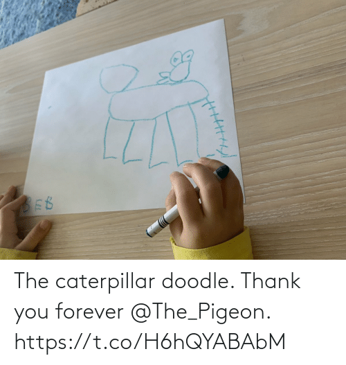 Thank You: The caterpillar doodle. Thank you forever @The_Pigeon. https://t.co/H6hQYABAbM