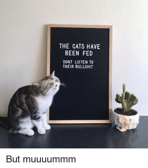 Cats, Bullshit, and Been: THE CATS HAVE  BEEN FED  DONT LISTEN TO  THEIR BULLSHIT But muuuummm