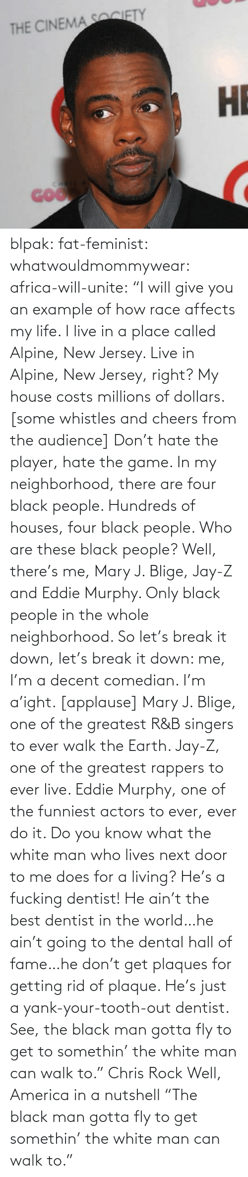 """mary j: THE CINEMA SOCIETY  НЕ  GOO blpak:  fat-feminist:  whatwouldmommywear:  africa-will-unite:  """"I will give you an example of how race affects my life. I live in a place called Alpine, New Jersey. Live in Alpine, New Jersey, right? My house costs millions of dollars. [some whistles and cheers from the audience] Don't hate the player, hate the game. In my neighborhood, there are four black people. Hundreds of houses, four black people. Who are these black people? Well, there's me, Mary J. Blige, Jay-Z and Eddie Murphy. Only black people in the whole neighborhood. So let's break it down, let's break it down: me, I'm a decent comedian. I'm a'ight. [applause] Mary J. Blige, one of the greatest R&B singers to ever walk the Earth. Jay-Z, one of the greatest rappers to ever live. Eddie Murphy, one of the funniest actors to ever, ever do it. Do you know what the white man who lives next door to me does for a living? He's a fucking dentist! He ain't the best dentist in the world…he ain't going to the dental hall of fame…he don't get plaques for getting rid of plaque. He's just a yank-your-tooth-out dentist. See, the black man gotta fly to get to somethin' the white man can walk to."""" Chris Rock  Well, America in a nutshell  """"The black man gotta fly to get somethin' the white man can walk to."""""""