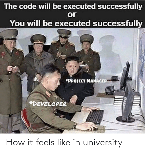 university: The code will be executed successfully  or  You will be executed successfully  *PROJECT MANAGER  *DEVELOPER How it feels like in university
