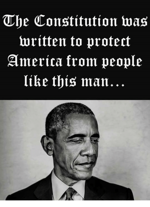 America, Constitution, and Man: The Constitution was  written to protect  America krom peoplie  like this man...