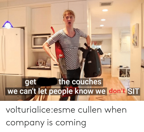 Tumblr, Blog, and Company: the couches  get  we can't let people know we don't SIT volturialice:esme cullen when company is coming
