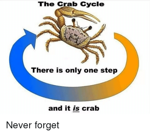 Memes, Never, and Only One: The Crab Cycle  There is only one step  and it is crab Never forget