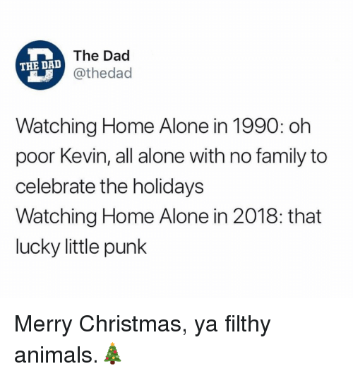 Being Alone, Animals, and Christmas: The Dad  @thedad  THE DAD  Watching Home Alone in 1990: oh  poor Kevin, all alone with no family to  celebrate the holidays  Watching Home Alone in 2018: that  lucky little punk Merry Christmas, ya filthy animals.🎄