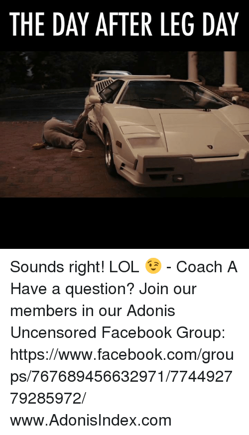 Day After Leg Day: THE DAY AFTER LEG DAY Sounds right! LOL 😉 - Coach A  Have a question? Join our members in our Adonis Uncensored Facebook Group:    https://www.facebook.com/groups/767689456632971/774492779285972/  www.AdonisIndex.com