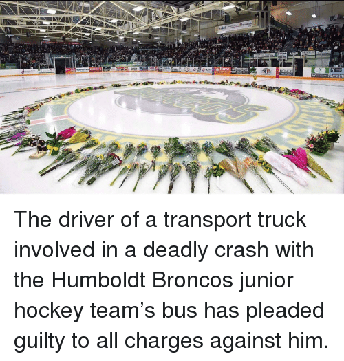 Hockey, Memes, and Broncos: The driver of a transport truck involved in a deadly crash with the Humboldt Broncos junior hockey team's bus has pleaded guilty to all charges against him.