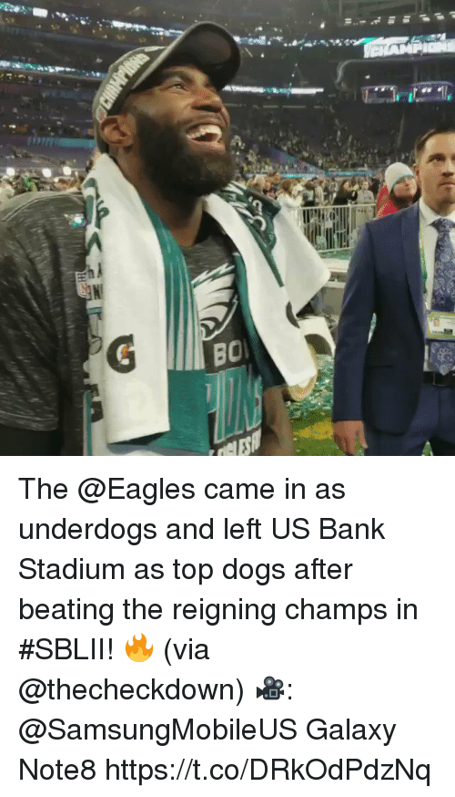 Dogs, Philadelphia Eagles, and Memes: The @Eagles came in as underdogs and left US Bank Stadium as top dogs after beating the reigning champs in #SBLII! 🔥 (via @thecheckdown)  🎥: @SamsungMobileUS Galaxy Note8 https://t.co/DRkOdPdzNq