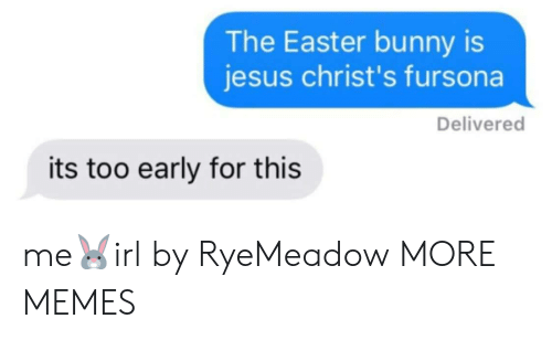 Dank, Easter, and Jesus: The Easter bunny is  jesus christ's fursona  Delivered  its too early for this me🐰irl by RyeMeadow MORE MEMES