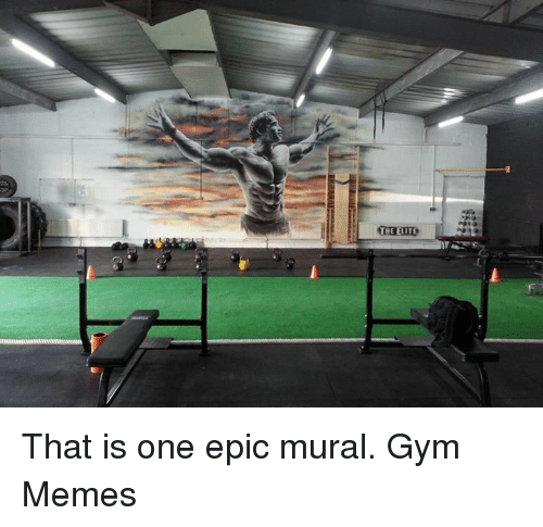 gym memes: THE ELITE That is one epic mural.  Gym Memes