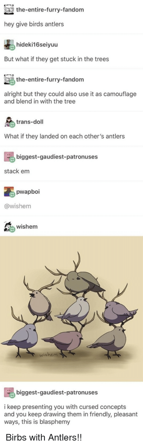 antlers: the-entire-furry-fandom  hey give birds antlers  hideki16seiyuu  But what if they get stuck in the trees  the-entire-furry-fandom  alright but they could also use it as camouflage  and blend in with the tree  trans-doll  What if they landed on each other's antlers  biggest-gaudiest-patronuses  stack em  pwapboi  @wishem  wishem  wishem  biggest-gaudiest-patronuses  i keep presenting you with cursed concepts  and you keep drawing them in friendly, pleasant  ways, this is blasphemy Birbs with Antlers!!