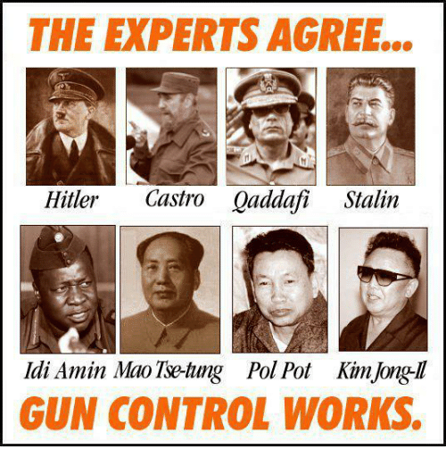 Pol Pot: THE EXPERTS AGREE...  Hitler Castro Qaddafi Stalin  Idi Amin Mao Tse-tung Pol Pot KimJong-ll  GUN CONTROL WORKS.
