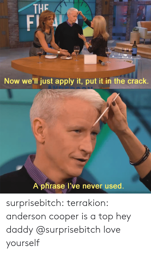 Love, Tumblr, and Anderson Cooper: THE  F)  AN  Now we'll just apply it, put it in the crack.  A phrase l've never used. surprisebitch:  terrakion:  anderson cooper is a top  hey daddy   @surprisebitch love yourself