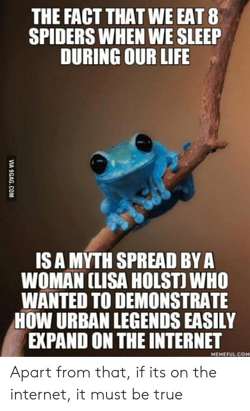 Internet, Life, and True: THE FACT THAT WE EAT 8  SPIDERS WHEN WE SLEEP  DURING OUR LIFE  IS A MYTH SPREAD BYA  WOMAN CLISA HOLST) WHO  WANTED TO DEMONSTRATE  HOW URBAN LEGENDS EASILY  EXPAND ON THE INTERNET  MEMEFUL.CO Apart from that, if its on the internet, it must be true