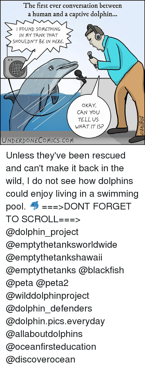 Dolphinately: The first ever conversation between  a human and a captive dolphin...  I FOUND SOMETHING  IN MY TANK THAT  SHOULDNT BE IN HERE.  OKAY,  CAN YOU  TELL US  WHAT IT SP  UNDERDONECOMICS.COM Unless they've been rescued and can't make it back in the wild, I do not see how dolphins could enjoy living in a swimming pool. 🐬 ===>DONT FORGET TO SCROLL===> @dolphin_project @emptythetanksworldwide @emptythetankshawaii @emptythetanks @blackfish @peta @peta2 @wilddolphinproject @dolphin_defenders @dolphin.pics.everyday @allaboutdolphins @oceanfirsteducation @discoverocean