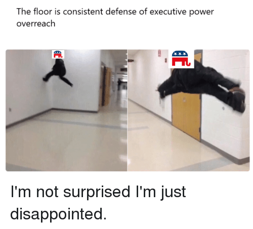 Disappointed, Politics, and Power: The floor is consistent defense of executive power  overreach