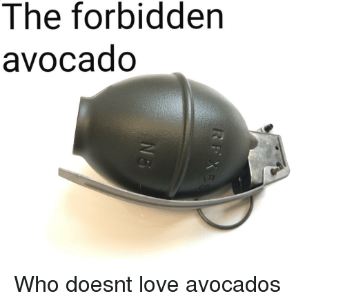 Love, Avocado, and Who: The forbidden  avocado  on Who doesnt love avocados