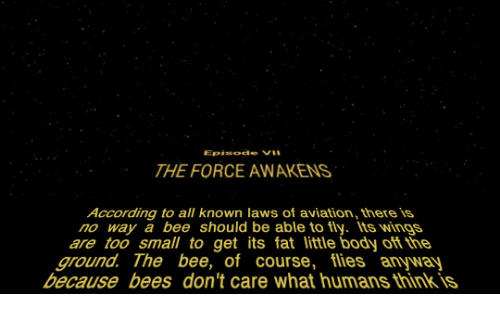 Wings, Fat, and According: THE FORCE AWAKENS  According to all known laws of aviation, there is  no way a bee should be able to fly Its wings  are too small to get its fat little body oft the  ground. The bee, of course, flies anyway  because bees don't care what humans think is
