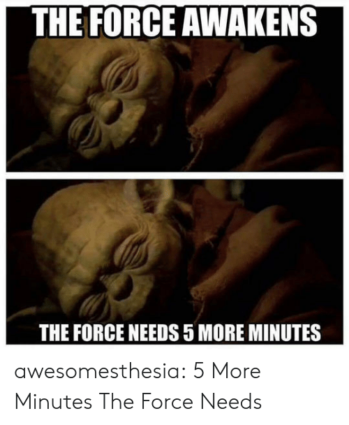 the force awakens: THE FORCE AWAKENS  THE FORCE NEEDS 5 MORE MINUTES awesomesthesia:  5 More Minutes The Force Needs
