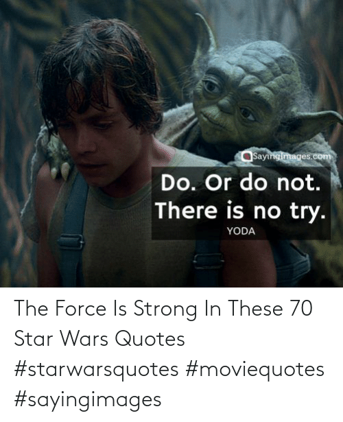 Force Is Strong: The Force Is Strong In These 70 Star Wars Quotes #starwarsquotes #moviequotes #sayingimages