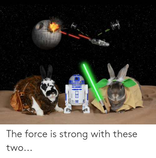 Force Is Strong: The force is strong with these two...