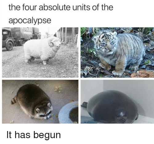 Apocalypse, The Four, and Units: the four absolute units of the  apocalypse It has begun
