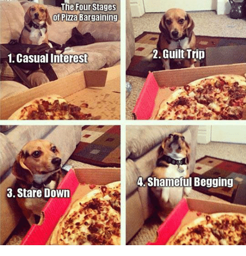 Memes, 🤖, and Shame: The Four Stages  of Piza Bargaining  1. Casual Interest  3. Stare Down  2. Guilt Trip  4, Shameful Begging