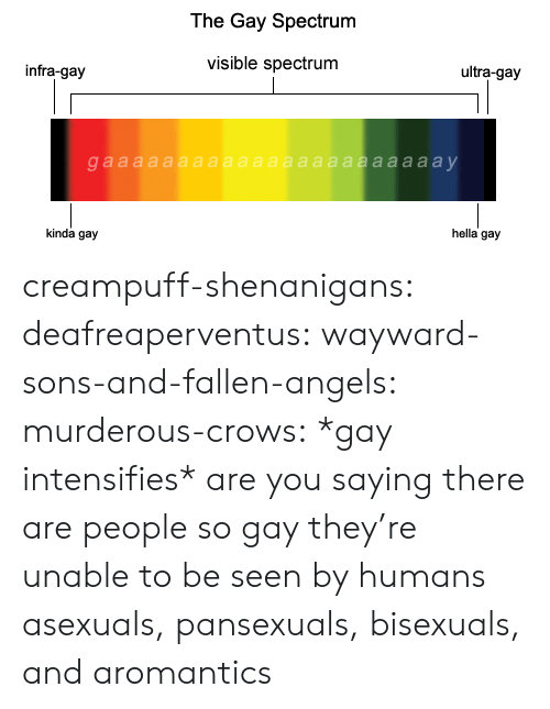 Gif, Shenanigans, and Tumblr: The Gay Spectrum  visible spectrum  ultra-gay  infra-gay  hella gay  kinda gay creampuff-shenanigans: deafreaperventus:  wayward-sons-and-fallen-angels:  murderous-crows:  *gay intensifies*  are you saying there are people so gay they're unable to be seen by humans  asexuals, pansexuals, bisexuals, and aromantics