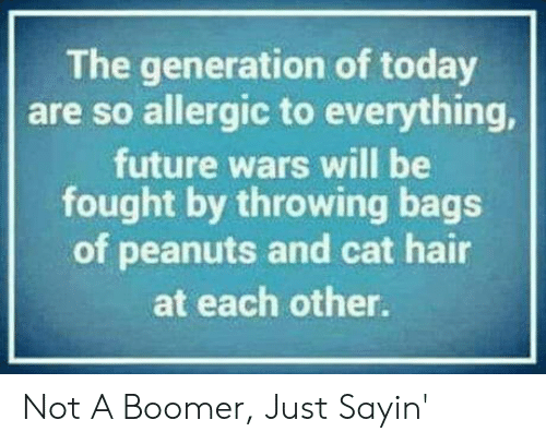 generation: The generation of today  are so allergic to everything,  future wars will be  fought by throwing bags  of peanuts and cat hair  at each other. Not A Boomer, Just Sayin'