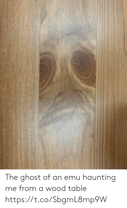 Ghost, Haunting, and Faces-In-Things: The ghost of an emu haunting me from a wood table https://t.co/SbgmL8mp9W