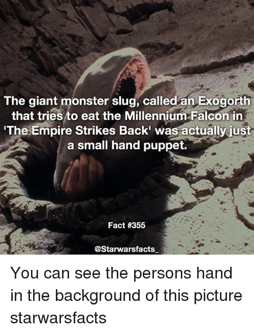 Empire, Memes, and Millennium Falcon: The giant monster slug, called an Exogorth  that tries to eat the Millennium Falcon in  The Empire Strikes Back' was actually just  a small hand puppet.  Fact #355  @Starwarsfacts You can see the persons hand in the background of this picture starwarsfacts