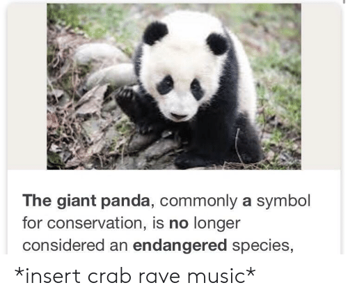 Music, Panda, and Giant: The giant panda, commonly a symbol  for conservation, is no longer  considered an endangered species, *insert crab rave music*