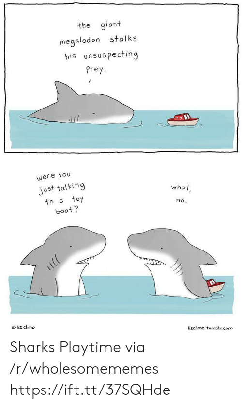 Liz Climo: the giant  stalks  megalodon  his unsuspecting  Prey  were you  just talking  toy  what  to a  no.  boat?  liz climo  lizclimo. tumblr.com Sharks Playtime via /r/wholesomememes https://ift.tt/37SQHde