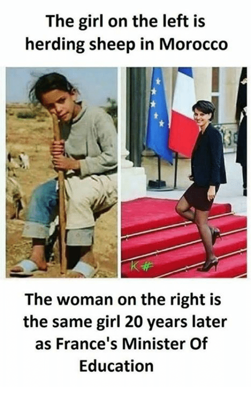 Memes, Girl, and Morocco: The girl on the left is  herding sheep in Morocco  The woman on the right is  the same girl 20 years later  as France's Minister Of  Education