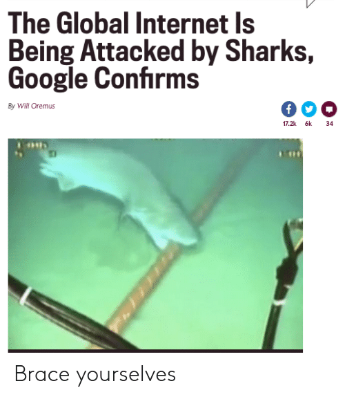 Google, Internet, and Sharks: The Global Internet Is  Being Attacked by Sharks,  Google Confirms  By Will Oremus  17.2k 6k  34 Brace yourselves