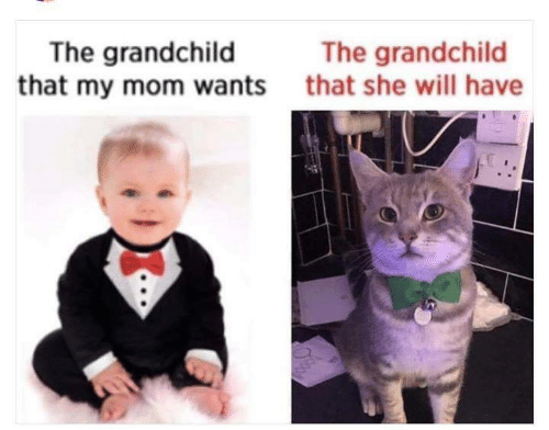 Memes, Mom, and 🤖: The grandchild  that my mom wants  The grandchild  that she will have