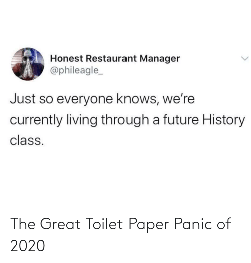 toilet: The Great Toilet Paper Panic of 2020