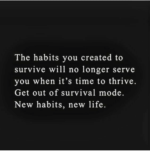 thrive: The habits you created to  survive will no longer serve  you when it's time to thrive.  Get out of survival mode.  New habits, new life.