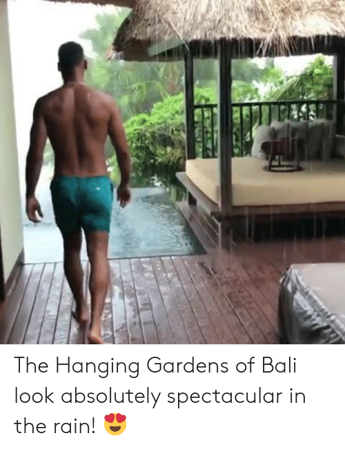 Dank, Bali, and Rain: The Hanging Gardens of Bali look absolutely spectacular in the rain! 😍