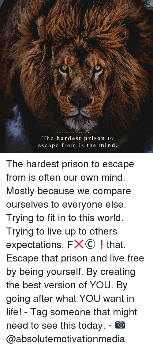 Life, Memes, and Prison: The hardest prison to  escape from is the mind The hardest prison to escape from is often our own mind. Mostly because we compare ourselves to everyone else. Trying to fit in to this world. Trying to live up to others expectations. F❌©❗️that. Escape that prison and live free by being yourself. By creating the best version of YOU. By going after what YOU want in life! - Tag someone that might need to see this today. - 📷 @absolutemotivationmedia